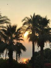 1. sunrise